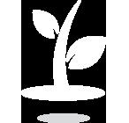origin-icono